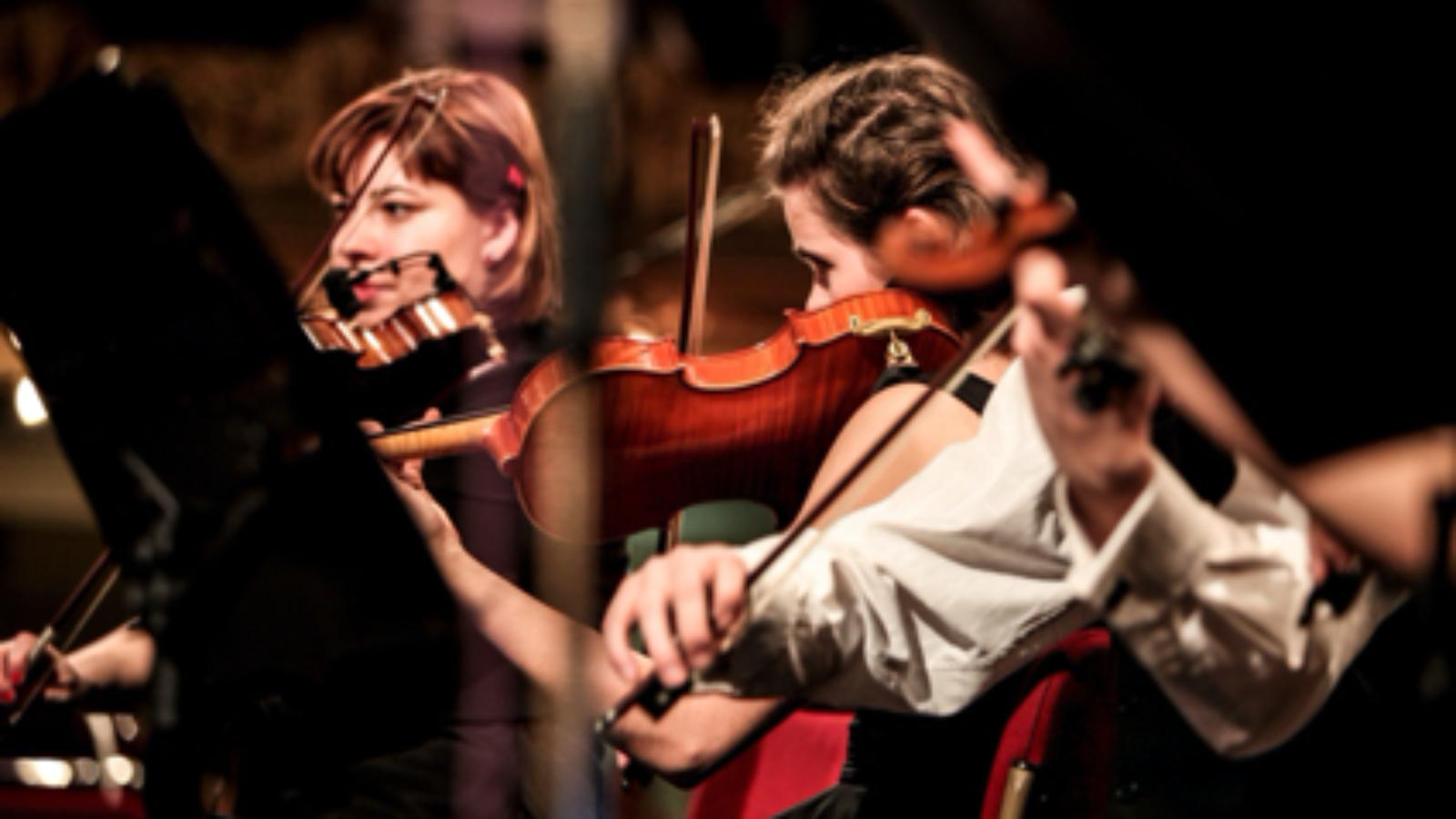 ヴァイオリンを弾いていて「首が痛い」と思ったときのチェックポイントを教えるよ