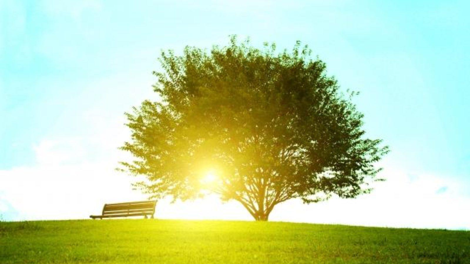 【朝活】朝の目覚めにはこのクラッシック音楽がおすすめ!やる気の出る爽やか系と優しいゆったり系17選